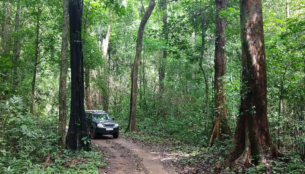Trek / Jeep Safari